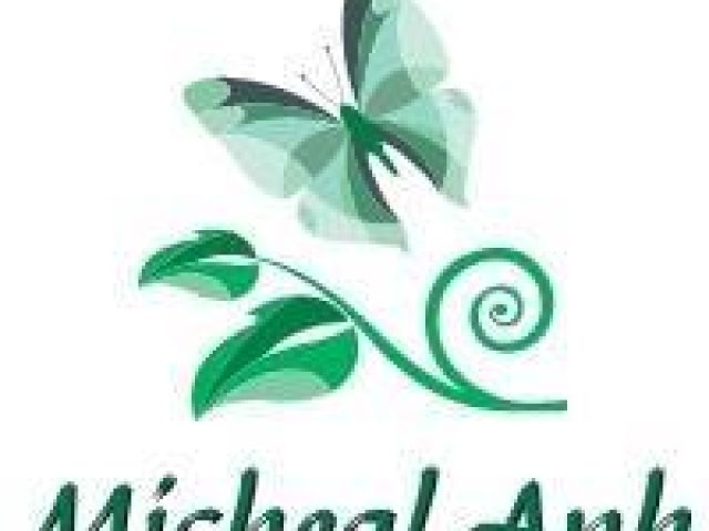 Micheal Anh